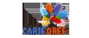 IPSIA organisme de formation CARIF OREF